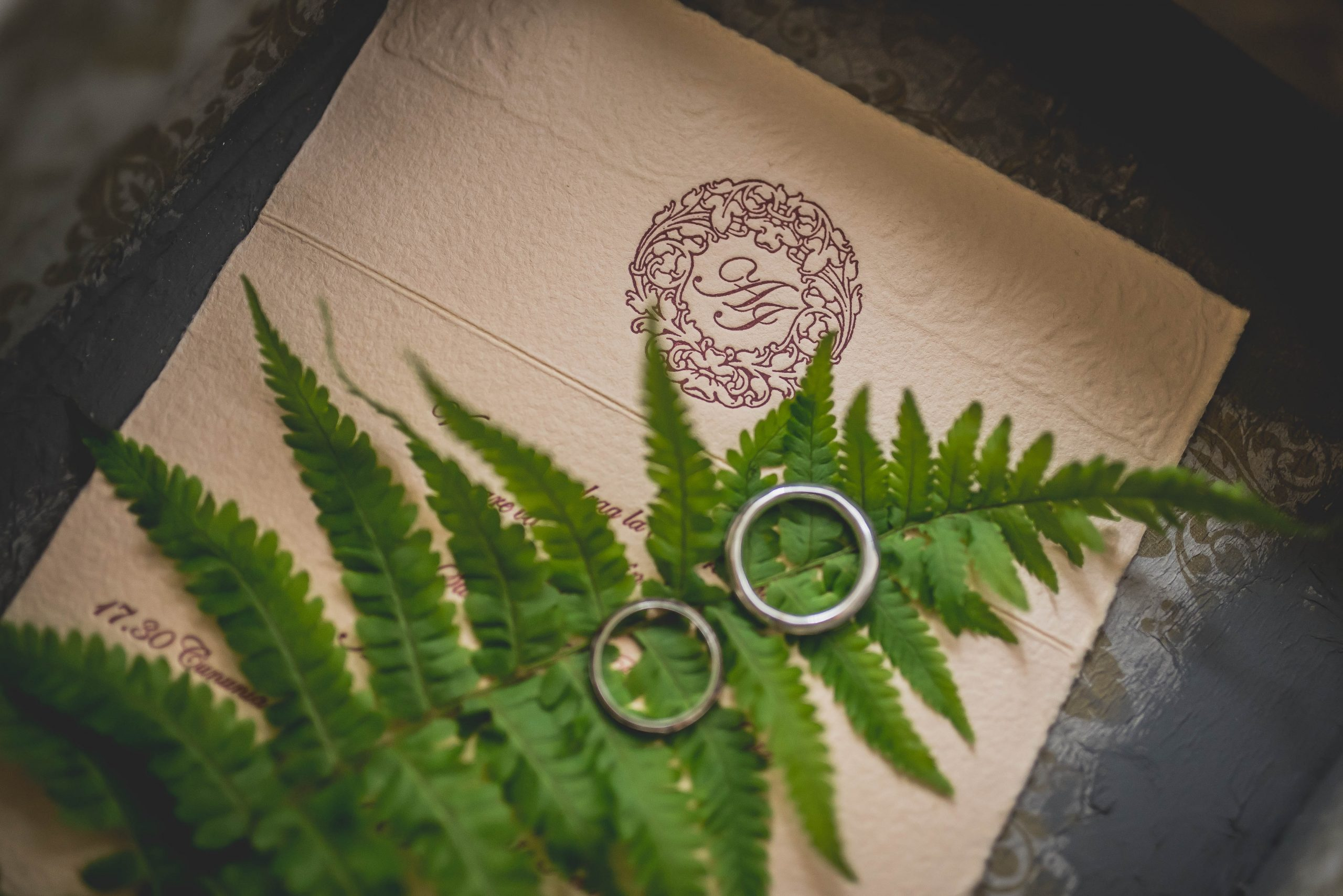 RSVP card with rings and plant on surface.
