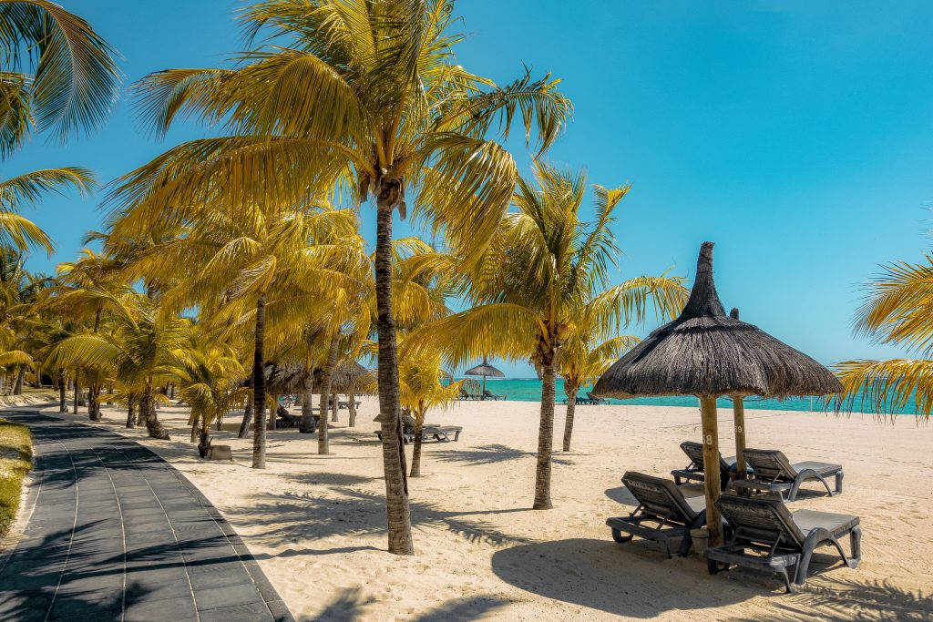 A beach lounge with umbrellas and palm trees